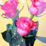 rosas_POST