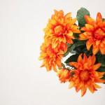 vaso laranja_POST